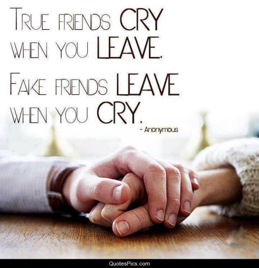 true-friends-cry-when-you-leave-anonymous